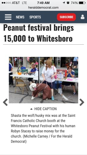 Shasta as St Francis at the St Francis of Assisi Catholic Church booth in Whitesboro, TX (courtesy of the Sherman Herald Democrat)