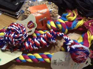 Petco win toys