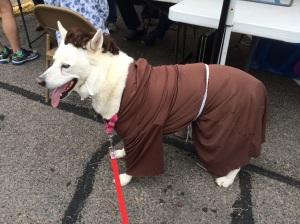 Shasta as St Francis at the Peanut Festival
